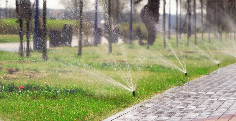 Automatic sprinkler system watering the lawn in the park. Gardening and lawn care concept.